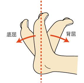 http://nursereport.net/illust/ankle_exercise.jpg