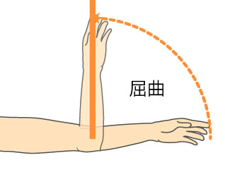 http://nursereport.net/illust/elbow_joint.jpg