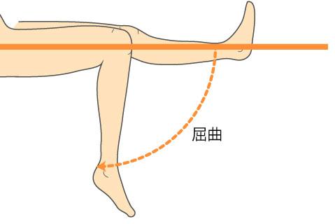 http://nursereport.net/illust/knee_joint-06.jpg