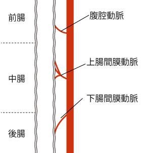 http://nursereport.net/illust/shouni_shoukaki6.jpg