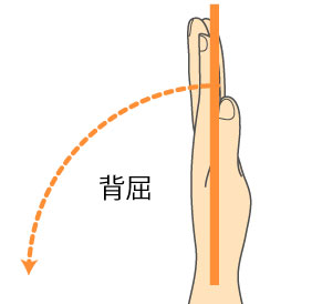 http://nursereport.net/illust/wrist_joint.jpg